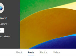 Google+ Profile Views
