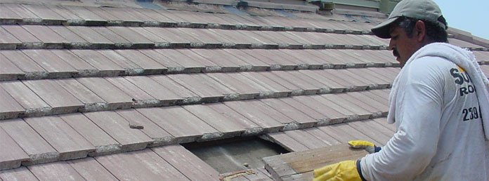 Repair a Damaged Roof