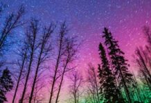 Catch the Northern Lights